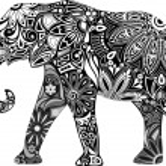 The cheerful elephant....
