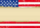 US scratched flag
