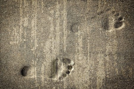 Photo for Footsteps in sandy on the beach - Royalty Free Image