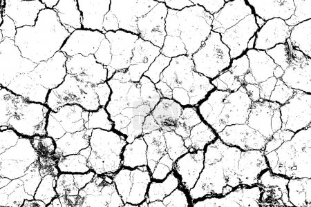 The cracks texture white and black.