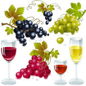 Different varieties of grapes with leaves wine glass with wine