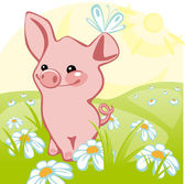 Pig stands on a flower meadow similar to the portfolio