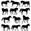 Set of 12 different moving horses silhouettes...