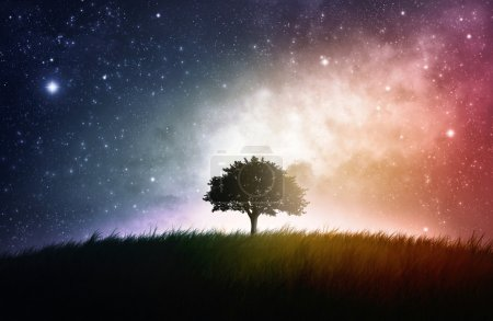 Photo for A single tree in a field with beautiful space background - Royalty Free Image