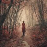 A woman in a dress dress walks through the foggy f...
