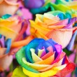 Bouquet of multi-colored roses (Rainbow rose)...