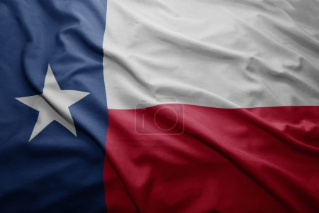 Flag of Texas state