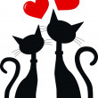 Two cats in love...