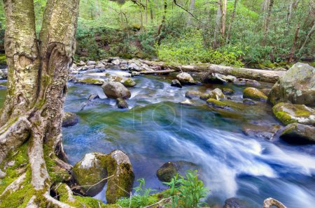 Photo pour Belle rivière de montagne fumée, longue exposition - image libre de droit