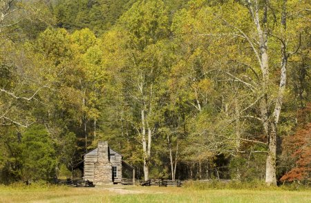 Rustic Log Cabin, Cades Cove, Great Smoky Mountains National Par
