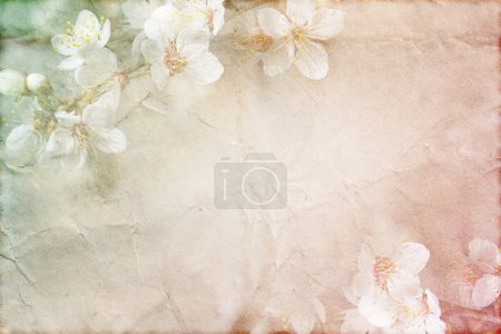 Photo for Gentle spring grunge texture with flowers on old paper with pastel colors - Royalty Free Image