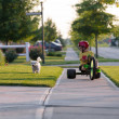 Young boy walking the dog with his tricycle on the...