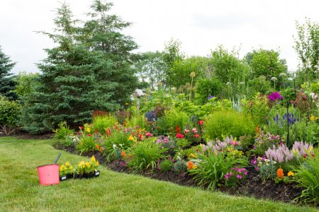 Planting new flowers in a colorful garden
