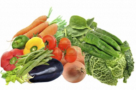 Photo for Mural of several vegetables surrounded by white background - Royalty Free Image