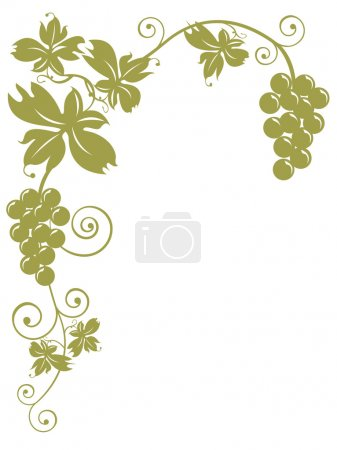 Bunches Of Grapes - with clipping path