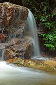 Krásný malý vodopád teče přes skálu v fores