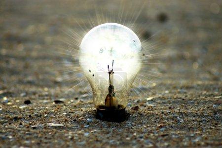 light bulb on the beach.