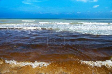 Black sea wastewater. destruction of nature