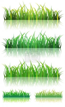 Spring Or Summer Green Grass Set