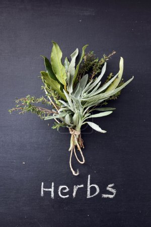 Photo for Tied fresh herbs on blackboard - Royalty Free Image