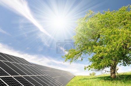 Foto de Paneles de energía solar en paisaje de primavera - Imagen libre de derechos
