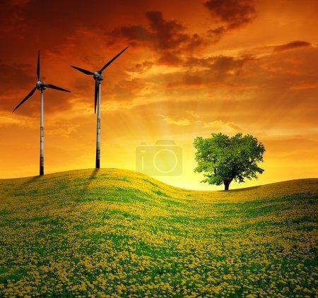 Foto de Puesta de sol sobre la pradera con turbinas de viento - Imagen libre de derechos