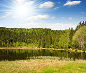 National Park Bavarian Forest - Germany