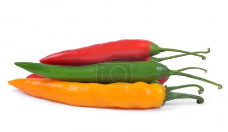 Photo for Hot chilli peppers isolated on white background - Royalty Free Image