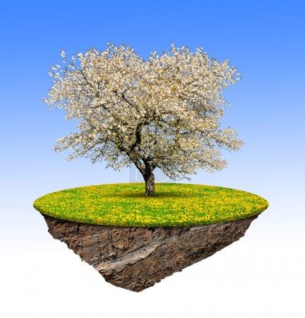 Photo pour Petite île et arbre isolé sur fond blanc - image libre de droit