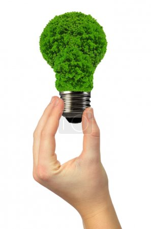 eco energy bulb in hand