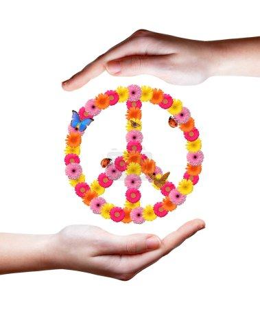 Photo pour Symbole de fleur de paix en mains - image libre de droit