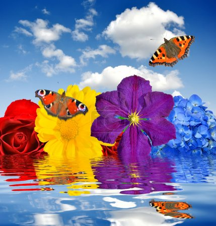 Photo for Floral background with butterflies - Royalty Free Image