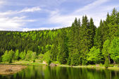 Small Arber Lake - Germany