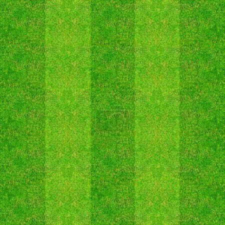 Photo for Green natural grass of a Football playground - Royalty Free Image