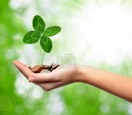Woman's hand are holding a money with clover