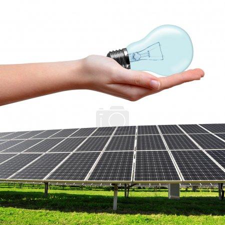 Foto de Paneles de energía solar y bombilla en mano sobre blanco - Imagen libre de derechos