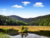 Small Arber Lake