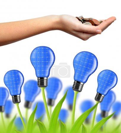 Eco energy bulb from solar panels