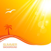 Summer Background With Shining Sun
