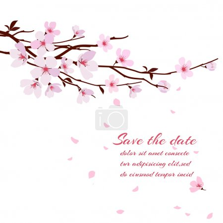Illustration for Cherry blossom, sakura branch with pink flowers. Greeting card vector template - Royalty Free Image
