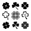 Vector icons of shamrock and four leaf clover coll...