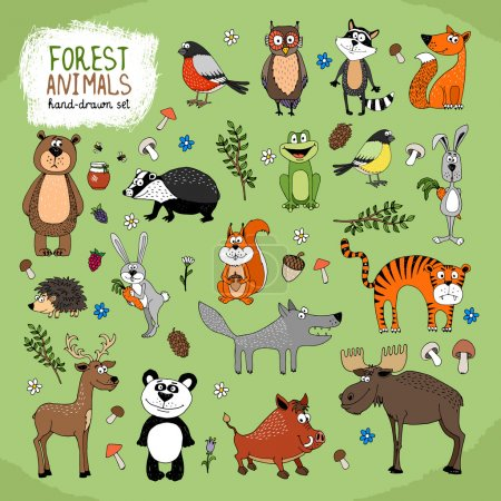 Illustration for Forest Animals large set hand-drawn illustration with a wolf fox bears panda owl raccoon tiger bunny hedgehog moose deer warthog badger squirrel frog and birds - Royalty Free Image