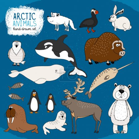 Illustration for Set of hand-drawn arctic animals on a cold blue background with a polar bear bison reindeer orca beluga whale and narwhal hare fox puffin walrus seal and penguins - Royalty Free Image