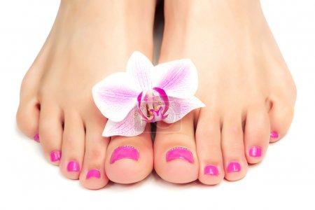 Photo pour Relax rose manucure et pédicure avec une fleur d'orchidée - image libre de droit