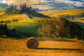 The Tuscan landscape, countryside