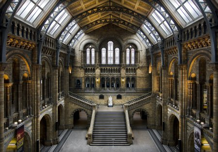 Natural History museum in London...