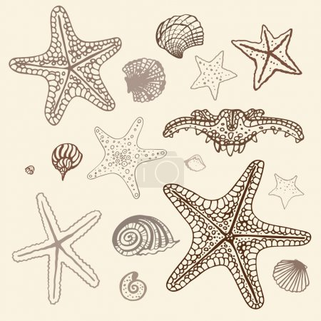Sea Starfish set. Hand drawn vector illustration.