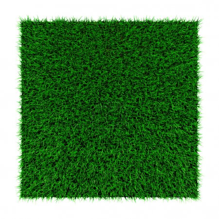 Photo for Grass squared portion isolated on white background - Royalty Free Image