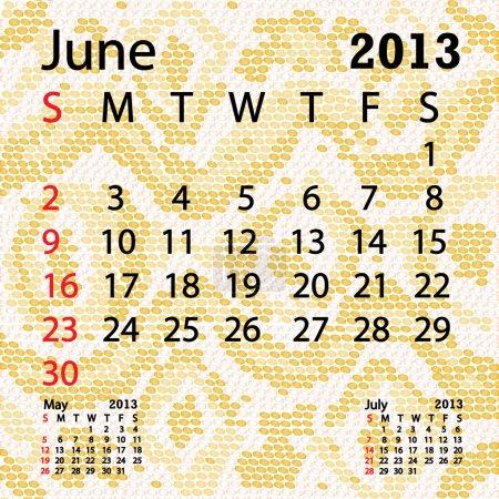 June 2013 calendar albino snake skin