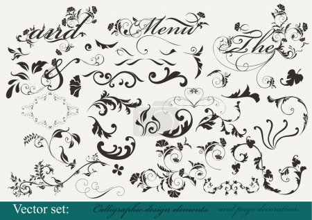 Illustration for Decorative elements for your design. Calligraphic vector - Royalty Free Image